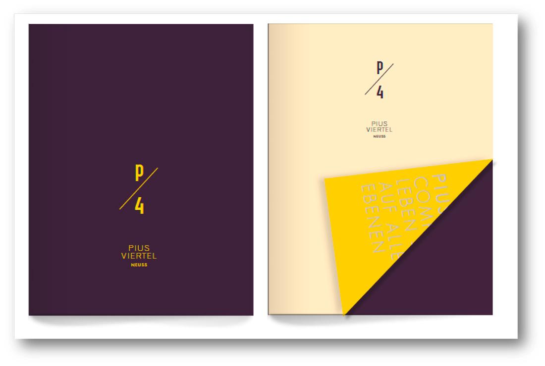 PIUS-Broschuere-Cover